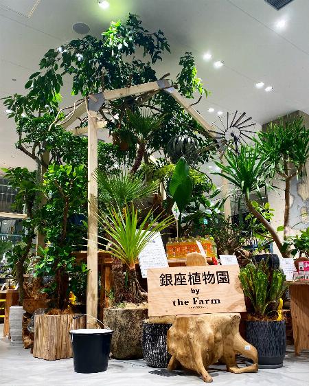 銀座植物園 by the Farm UNIVERSAL GINZA