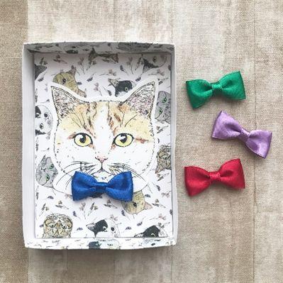 nemunoki paper item「あなた色の猫、描きます」