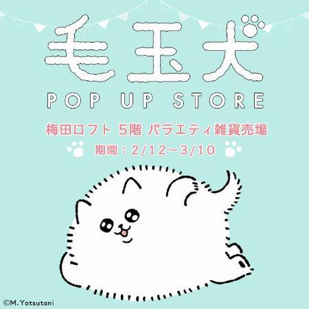 毛玉犬 POP UP STORE