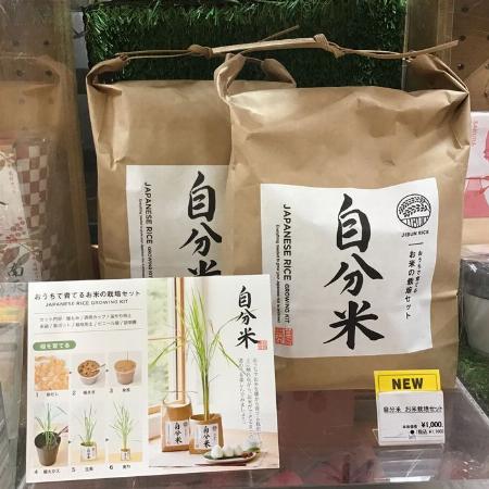 自分米 お米栽培セット